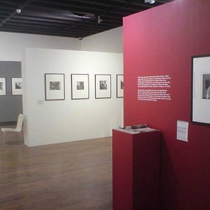 Past Exhibition at Mascalls Gallery