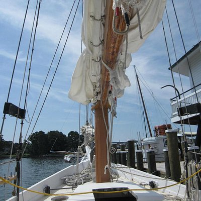 Bow of the skipjack