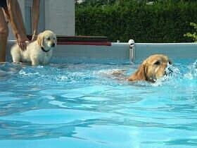 piscina di mimmo