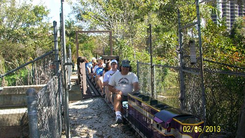 Ride thru the wilderness on open passenger cars