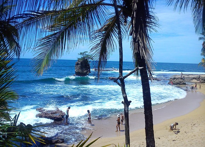 punta Manzanillo Abel Bustamante local guide.