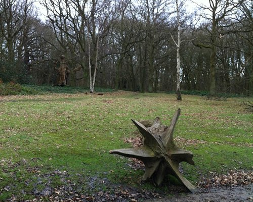 Landscape at Thorndon