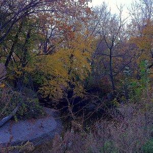 Indian Creek in Autumn