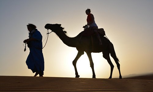 Sahara desert tour, Camel trekking in Merzouga desert