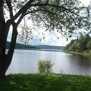 view of Lake Francis