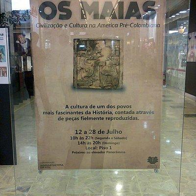 Os Maias por Eduardo Vilela.