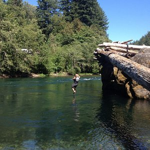 Swim spot/log jump!