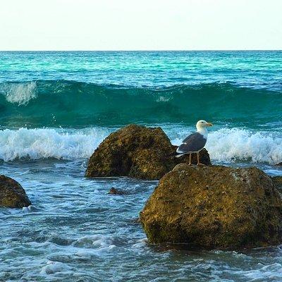 Arher Beach: rough waters