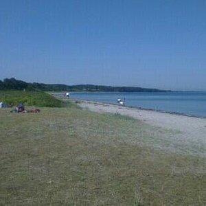Varbjerg strand