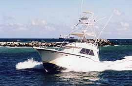 All-Inclusive Sportfishing