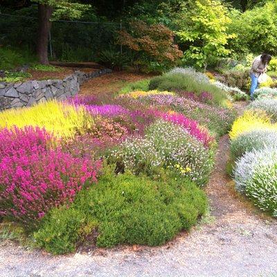 Connie Hansen Gardens