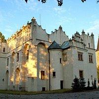 Zamek w Pabianicach.