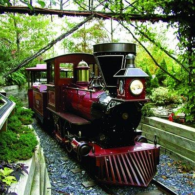 Ride the Arrow River Train!