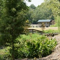 Brick Pond Park trails wrap around many large and small ponds (over 30 acres of wetlands)