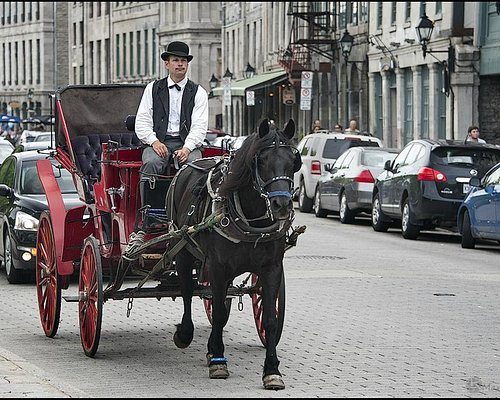 Old Montreal - Vieux Montreal