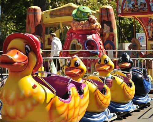 Ducks convoy