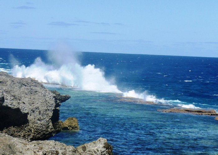 Blowholes to the left...