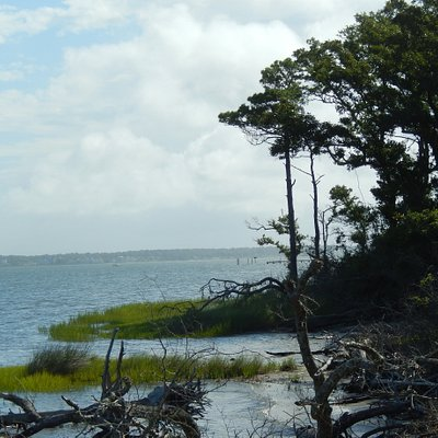 View along the shore