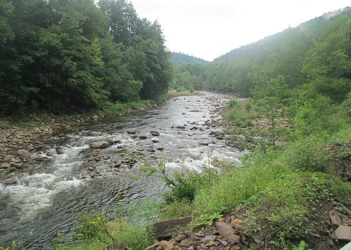 The masive river that cuts through the park, which is at slow steam in July.
