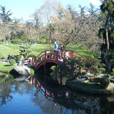 ponte do jardim japones