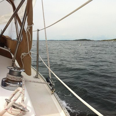 A view from the Ark II