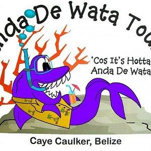 Anda De Wata Logo