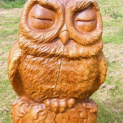 Scrumpy the Owl