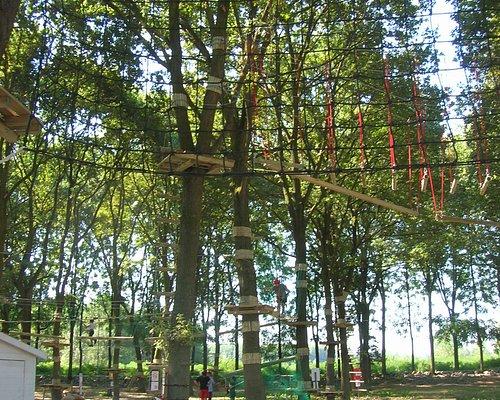 immagine del parco