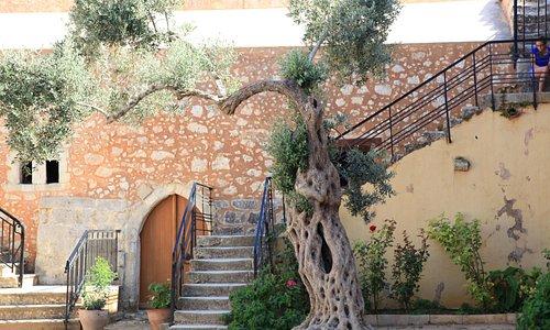 la scala che porta alle mura