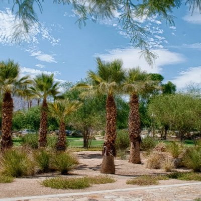 BEAUTIFUL LANDSCAPING AT RUTH HARDY PARK