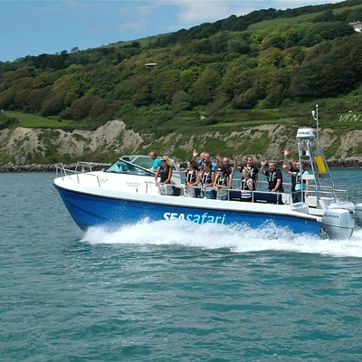 Sea Safari heads west to Steephill Cove