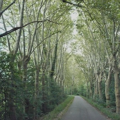 Very beautiful park