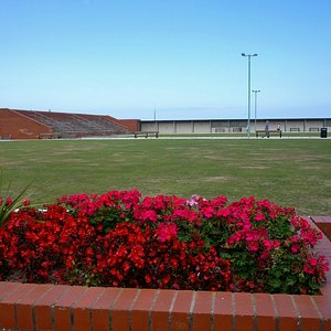 Crown Green Bowling Centre, Rhyl - grass needs a bit of water!