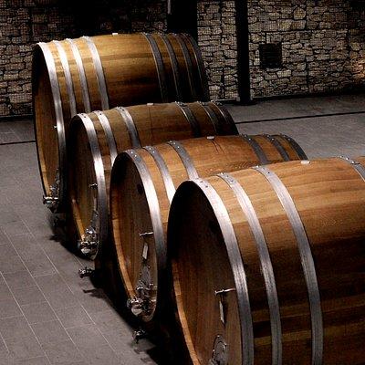 Le botti per la maturazione del vino
