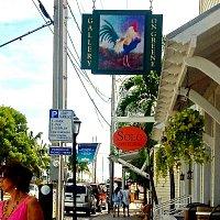 5 Stars - Gallery on Greene Key West