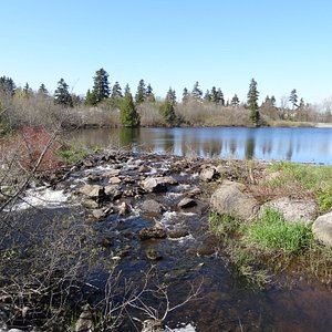Little River Reservoir Park