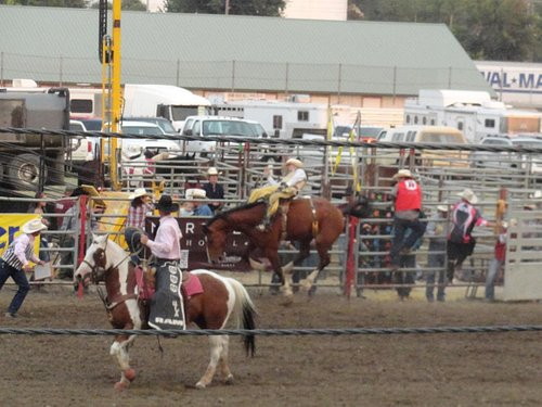 Yellowstone Roundup Rodeo