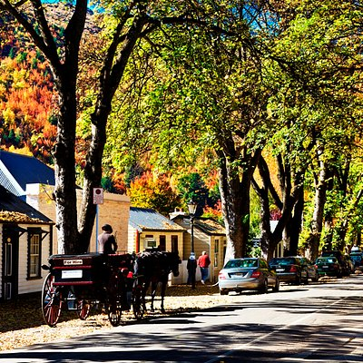 Arrowtown's miners' cottages, photo courtesy of Southern Explorer