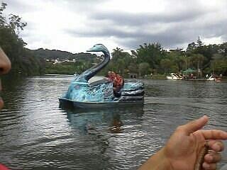 lago do parque..