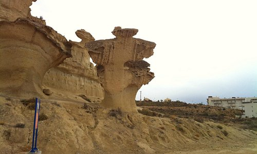 Amazing nature carvings