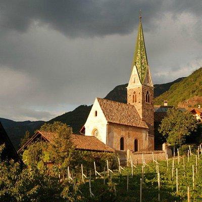 Weingut Messnerhof / Azienda vitivinicola Messnerhof