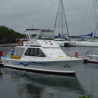 Les deux bateaux de plongée sont neufs et très confortables