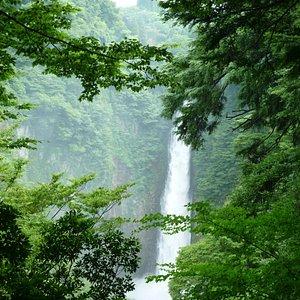 当日午前中まで3日間雨が降っていたので水量が多かった