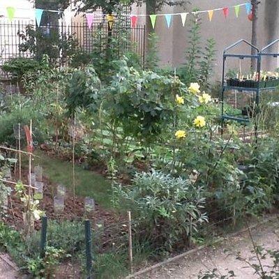 enclos dans le Jardin Anne Franck