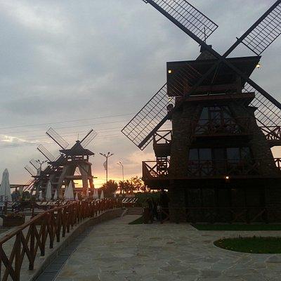 Sunset on wind mills