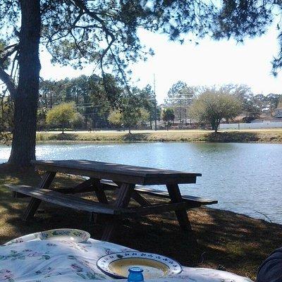 Come have a picnic
