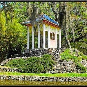 Sacred Buda in Jungle Gardens