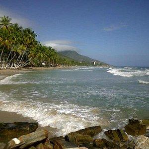 playa guacuco