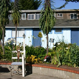 View of the Mendocino Art Center