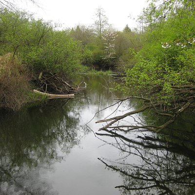 Millstone River at the north end of the marsh.